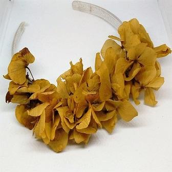 336×336 Diadema hortensias cava