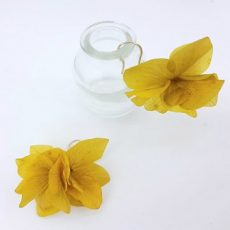 pendientes de flor Amarillas preservadas y plata ley