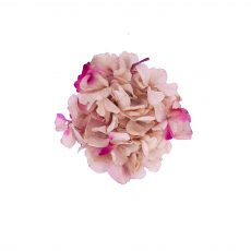 Broche de Flor preservada