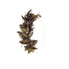 Diadema de Flores Parvifolia