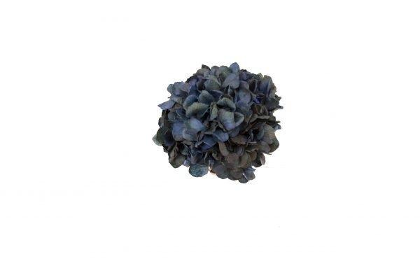 Broche Ariadna Azul marino